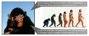 Теория Дарвина картинки
