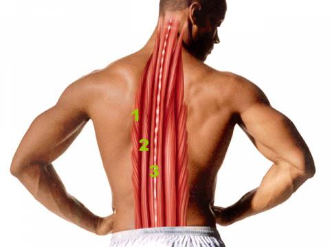 Упражнения для позвоночника при остеохондрозе шея поясница